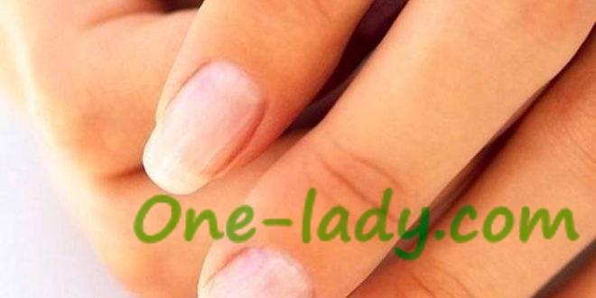Строение ногтя и ногтевой пластины фото